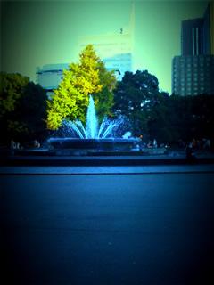 iPhoneの写真24