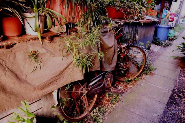 神谷町で自転車