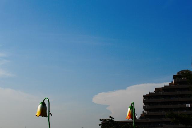 隅田川方面の空